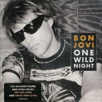 Cover Bon Jovi - One Wild Night [2001]
